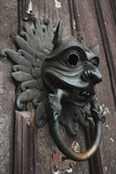 The Sanctuary Knocker Photographic Print by Stuart Forster