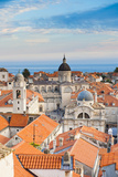 Dubrovnik Cathedral (Cathedral of the Assumption of the Virgin Mary) Photographic Print by Matthew Williams-Ellis