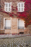 Autumn Leaves in Noyers-Sur-Serein Photographic Print by Julian Elliott