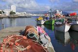 Fishing Boats in Harbour, Ponta Delgada Port, Sao Miguel Island, Azores, Portugal, Atlantic, Europe Photographic Print by Richard Cummins