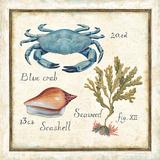 Oceanography IV Print by Daphne Brissonnet