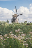 Canal and Windmills, Kinderdijk, UNESCO World Heritage Site, South Holland, the Netherlands, Europe Photographic Print by Mark Doherty