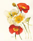 Red and White Icelands II Plakater af Shirley Novak