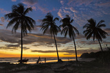 Palm Trees at Sunset on Playa Guiones Surfing Beach Photographic Print by Rob Francis