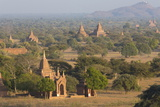 View over the Temples of Bagan Bathed in Evening Sunlight Photographic Print by Lee Frost