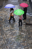 Rain on Cobbled Street, Seville, Andalucia, Spain, Europe Photographic Print by Stuart Black