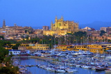 Cathedral and Harbour, Palma, Mallorca, Spain, Europe Photographic Print by Neil Farrin