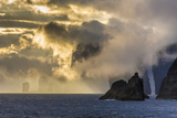 Mykines Coastline at Sunrise, Faroes, Denmark, Europe Photographic Print by Michael Nolan
