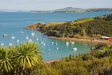 Sailing Boats on Waiheke Island, Auckland, North Island, New Zealand, Pacific Photographic Print by Matthew Williams-Ellis