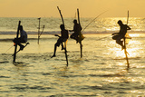 Stilt Fishermen, Dalawella, Sri Lanka, Indian Ocean, Asia Photographic Print by Christian Kober