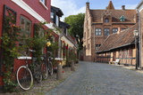 Cobblestone Alley in the Old Town, Ribe, Jutland, Denmark, Scandinavia, Europe Photographie par Stuart Black