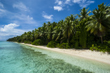 Paradise White Sand Beach and Turquoise Water on Ant Atoll, Pohnpei, Micronesia, Pacific Photographic Print by Michael Runkel