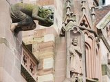 Gargoyles on Freiburg Cathedral, Freiburg, Baden-Wurttemberg, Germany, Europe, Europe Photographic Print by Christian Kober