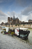 Notre Dame De Paris Cathedral and the River Seine, Paris, France, Europe Photographic Print by Julian Elliott
