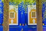 Majorelle Gardens (Gardens of Yves Saint-Laurent), Marrakech, Morocco, North Africa, Africa Fotografisk tryk af Matthew Williams-Ellis