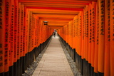 The Endless Red Gates of Kyoto's Fushimi Inari Shrine, Kyoto, Japan, Asia Fotografisk trykk av Michael Runkel