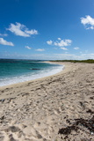 Remote White Sand Beach in Barbuda, Antigua and Barbuda, West Indies, Caribbean, Central America Photographic Print by Michael Runkel