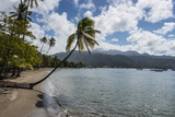 Beach in Prince Rupert Bay, Dominica, West Indies, Caribbean, Central America Photographic Print by Michael Runkel