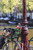 A Bicycle Decorated with Flowers by a Canal, Amsterdam, Netherlands, Europe Lámina fotográfica por Amanda Hall