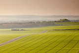 The Vale of Pewsey at First Light, Wiltshire, England, United Kingdom, Europe Photographic Print by Julian Elliott