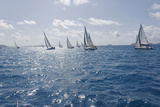 Sailboat Regattas. British Virgin Islands, West Indies, Caribbean, Central America Photographic Print by Jean-Pierre DeMann