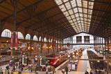 Julian Elliott - A Busy Gare Du Nord Station in Paris, France, Europe Fotografická reprodukce