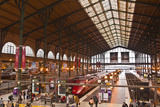 A Busy Gare Du Nord Station in Paris, France, Europe Photographic Print by Julian Elliott