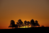 Orange Sky at Dawn, Custer State Park, South Dakota, United States of America, North America Photographic Print by James Hager