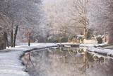 The Canal De Berry after a Snow Shower, Loir-Et-Cher, Centre, France, Europe Photographic Print by Julian Elliott