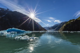 Calved Glacier Ice in Tracy Arm-Ford's Terror Wilderness Area Photographic Print by Michael Nolan