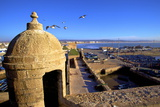 North Bastion View over Essaouira, Morocco, North Africa, Africa Photographic Print by Neil Farrin