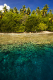 Crystal Clear Water and an Islet in the Ant Atoll, Pohnpei, Micronesia, Pacific Photographic Print by Michael Runkel