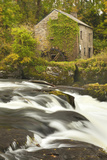 Cenarth Waterfalls, Carmarthenshire, Wales, United Kingdom, Europe Photographic Print by Billy Stock