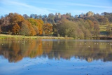 Hardwick Hall Reflecting in Pond, Hardwick Park, Derbyshire, England, United Kingdom, Europe Photographic Print by Frank Fell