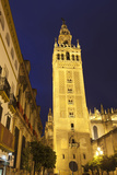 The Giralda at Night, UNESCO World Heritage Site, Seville, Andalucia, Spain, Europe Photographic Print by Stuart Black