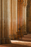 Solitude Inside Saint Pierre Church Abbey in Chartres, Eure-Et-Loir, Centre, France, Europe Photographic Print by Julian Elliott