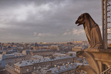 A Gargoyle on Notre Dame De Paris Cathedral Looks over the City, Paris, France, Europe Photographic Print by Julian Elliott