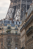 The Eiffel Tower and Typical Parisian Apartments, Paris, France, Europe Lámina fotográfica por Julian Elliott