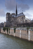 Notre Dame De Paris Cathedral, Paris, France, Europe Photographic Print by Julian Elliott