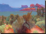 High Desert Stretched Canvas Print by Mary Silverwood
