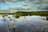 Ballynahone Bog, County Londonderry, Northern Ireland, UK, June 2011 Photographic Print by Ben Hall