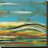 High Plains 4 Stretched Canvas Print by Scott Hile