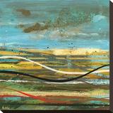 High Plains 3 Stretched Canvas Print by Scott Hile