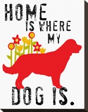 Home Is Where My Dog Is Stretched Canvas Print by Ginger Oliphant