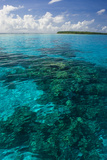 Beautiful Turquoise Water in the Ant Atoll, Pohnpei, Micronesia, Pacific Photographic Print by Michael Runkel
