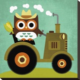 Owl on Tractor Stretched Canvas Print by Nancy Lee