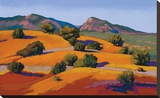 Juniper Hills Stretched Canvas Print by Mary Silverwood