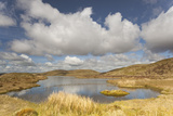 Upland Peatbog Pool. Pumlumon Fawr, Cambrian Mountains, Wales, January 2012 Photographic Print by Peter Cairns