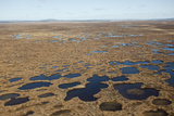 Aerial View across the Flow Country Showing Peatland Pool System, Forsinard, Caithness, Scotland Photographic Print by Peter Cairns