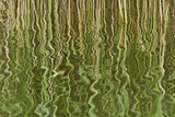 Abstract Reflection of Reeds in Rippled Water, Westhay Moor Swt, Somerset Levels, England, UK Photographic Print by Guy Edwardes